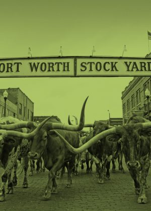 fort_worth_stock_yards_green - 2018 SPE Thermoforming Conference News Button